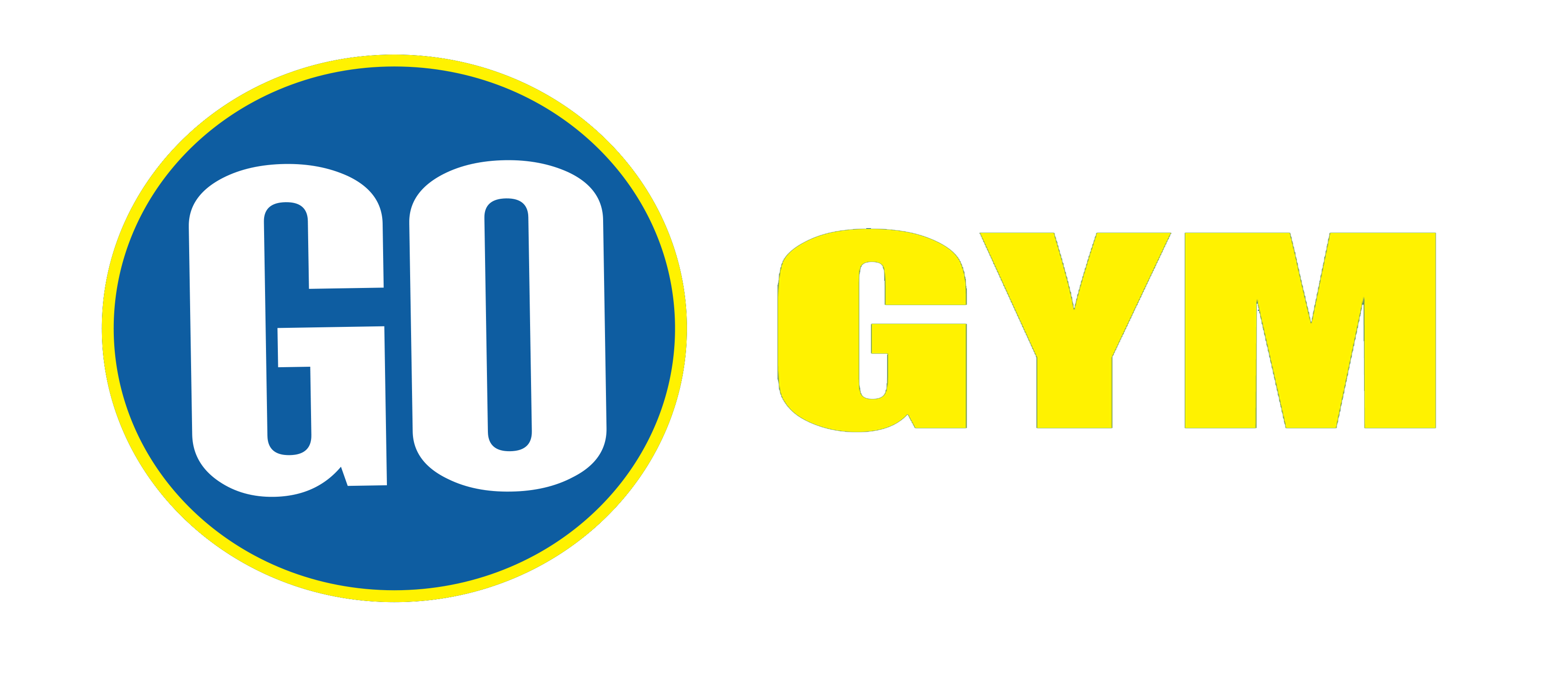 Go Gym Fitness